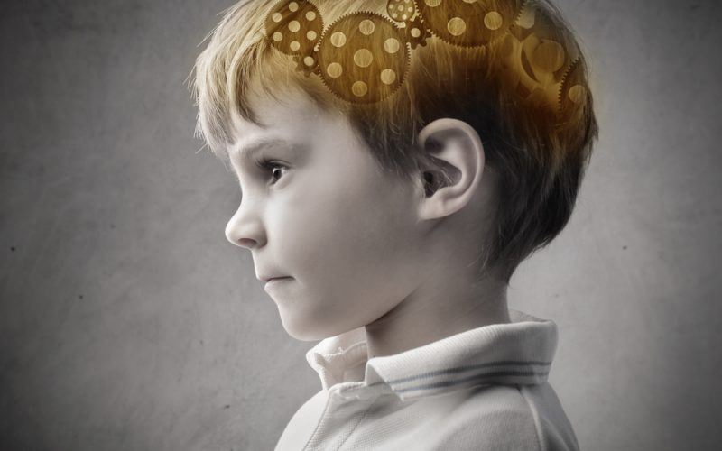 Poverty Linked To Brain Structure In >> Poverty And The Brain Think