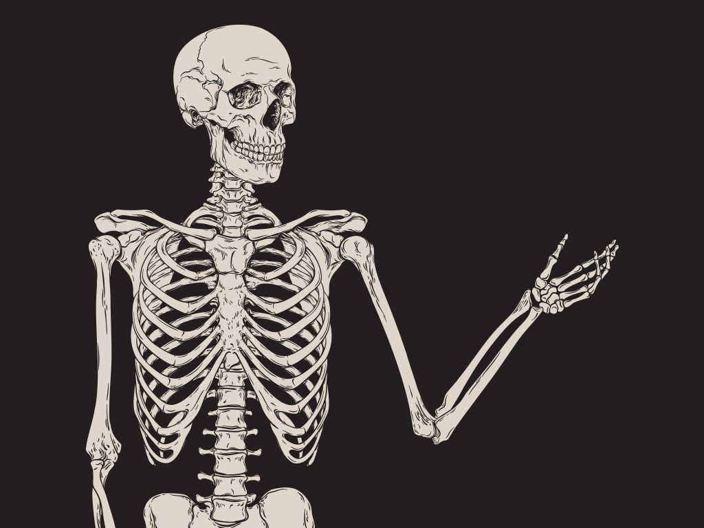 The Life - And Afterlife - Of Our Bones | Think