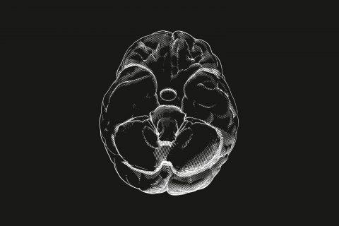 Photo illustration of a brain.