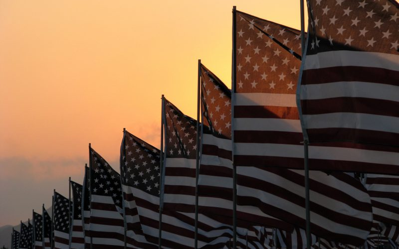 Photo of a line of American flags.